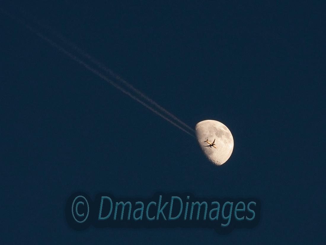 Fly me to the moon too
